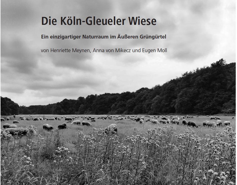 Rheinische Heimatpflege – 55. Jahrgang – 4/2018