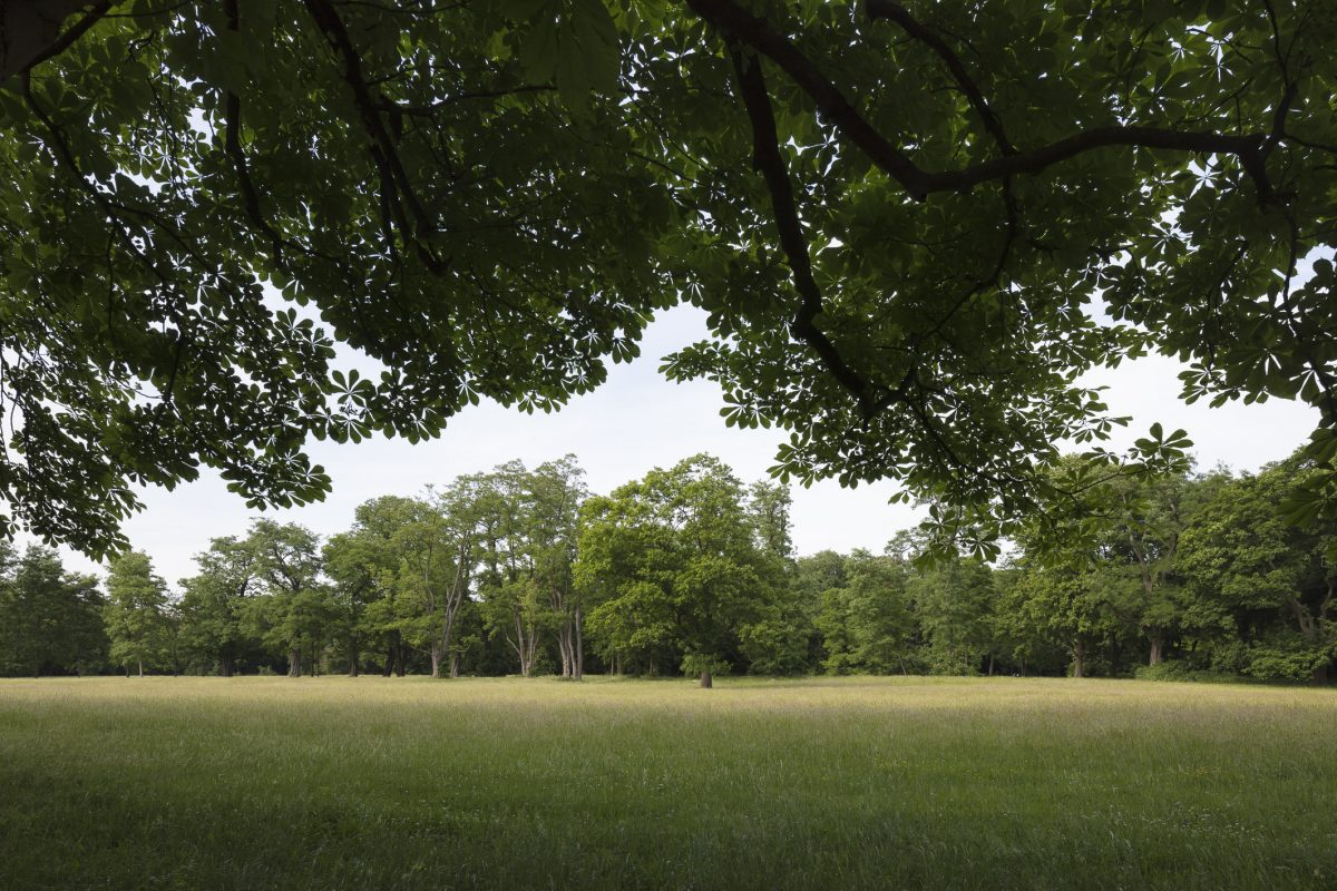Natur- und Gartenräumevon allerhöchster Qualität