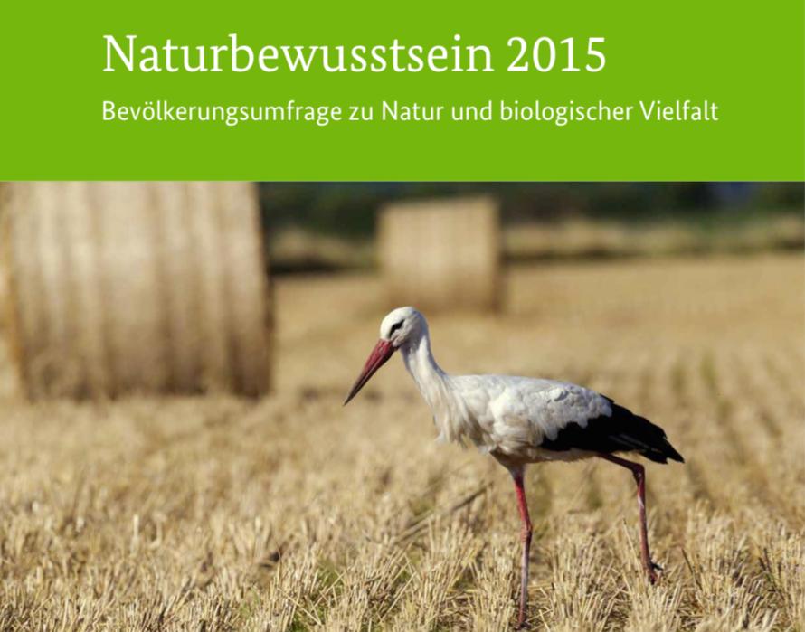 BfN-Naturbewusstseins-Studie zur Stadtnatur