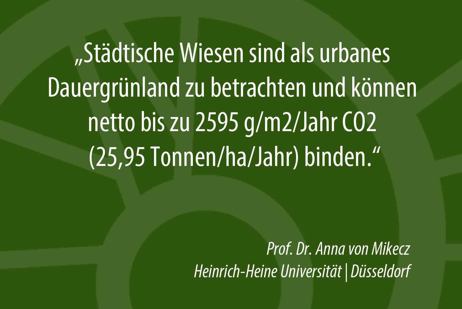Urbanes Dauergrünland bindet CO2