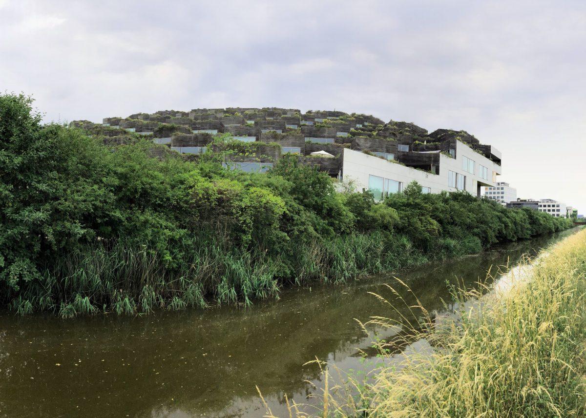 Grün Bauen | FAZIT DLF Kultur